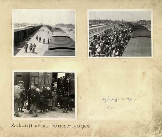 Wo bekomme ich die Bilder aus dem Auschwitz-Album her?