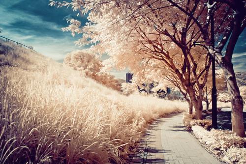 schöne landschaft :) - (Internet, Bilder, Foto)