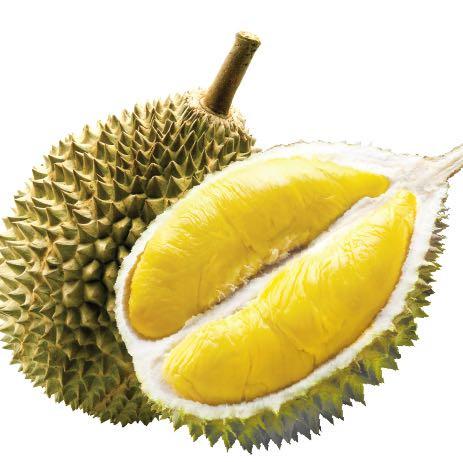 Hier seht ihr die Durian. - (Früchte, durian, Käsefrucht)