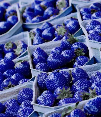 ..... - (blau, Erdbeeren)