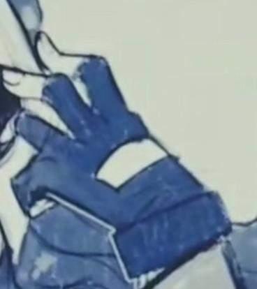Wo gibt es diese Handschuhe?
