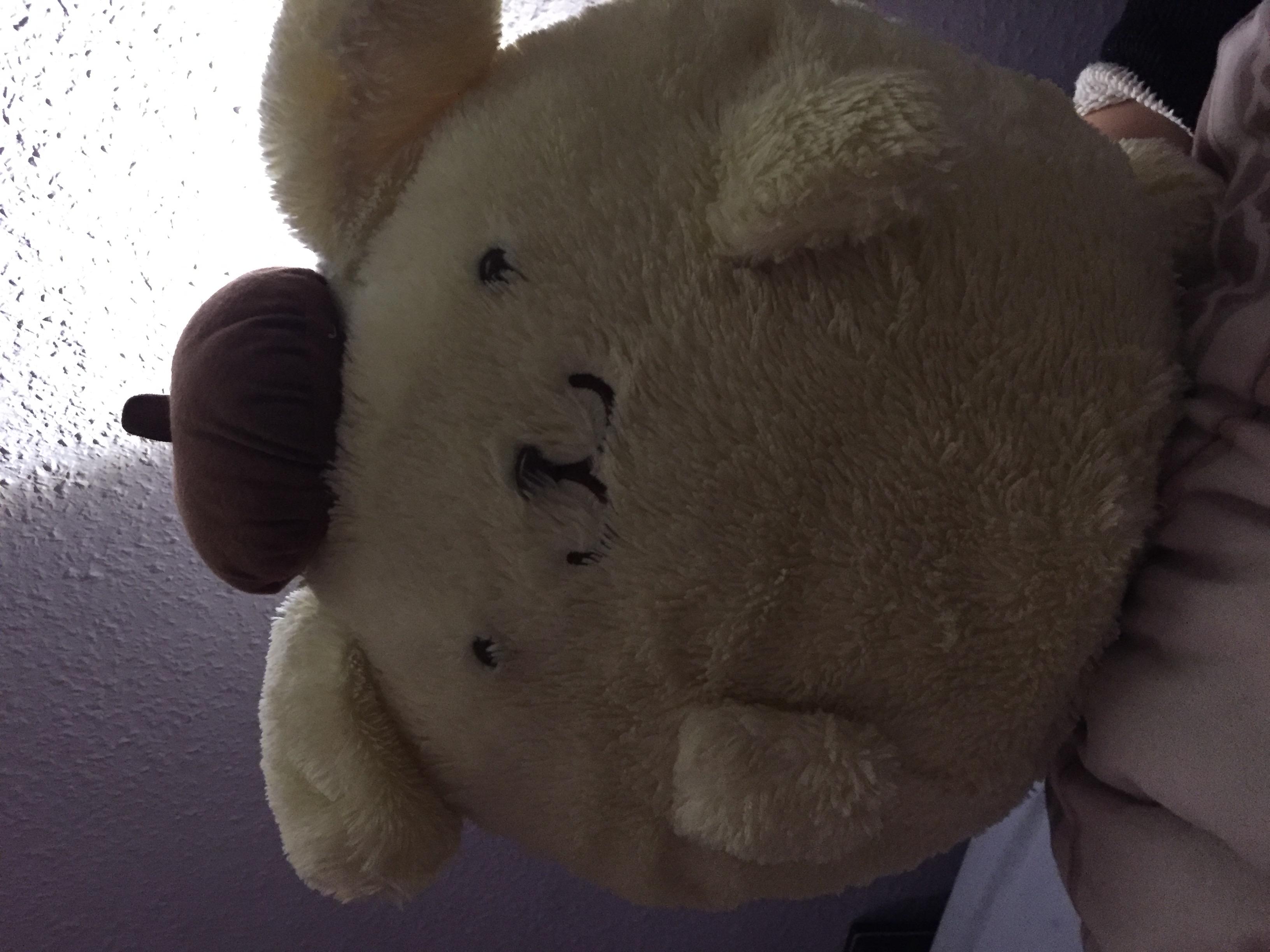Wo kann ich dieses kuscheltier nachkaufen kaufen japan for Wo kann ich innenarchitektur studieren