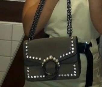 Wo kann man diese Tasche kaufen (wie finde ich sie)?