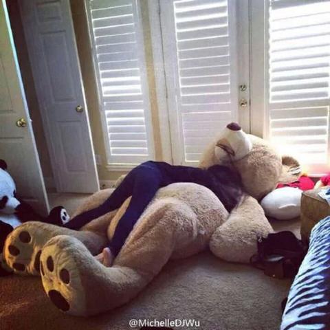 xxl Teddybär - (Freizeit, kuscheltier, Teddy)