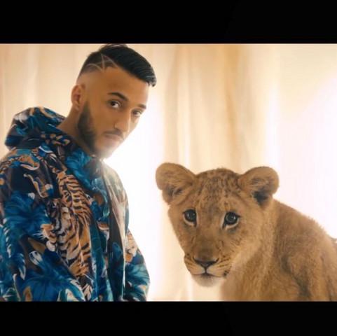 Wo kann man ein Foto mit einem Leoparden machen?