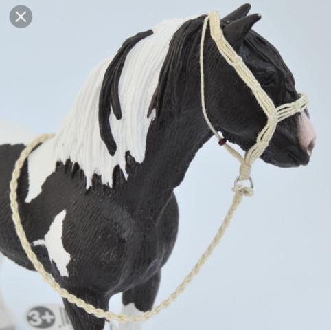 So wie das  - (Pferde, reiten)