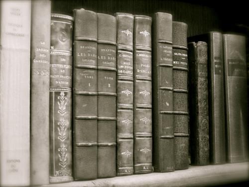 ... - (Buch, Literatur, lesen)