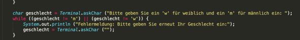 Wo liegt mein Fehler in der Java while Schleife?