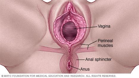 big ass oiled anal