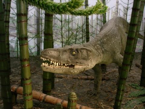 wo berall gibt es in deutschland dinosaurier museen oder ausstellungen museum. Black Bedroom Furniture Sets. Home Design Ideas