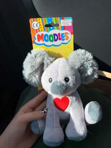 Woher ist dieser Koala?