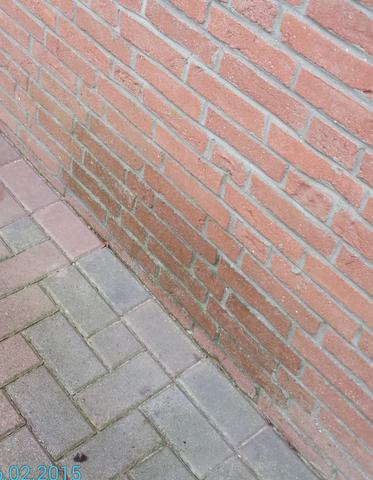 Bild1 - (Feuchtigkeit, aussenfassade)