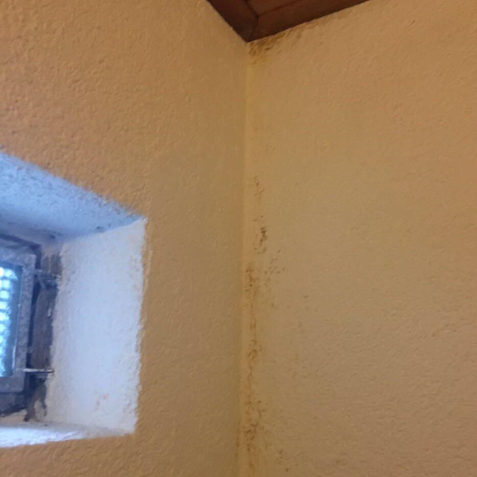 luftentfeuchter schlafzimmer forum 155x220 bettw sche wandfarbe schlafzimmer lindgr n flanell. Black Bedroom Furniture Sets. Home Design Ideas