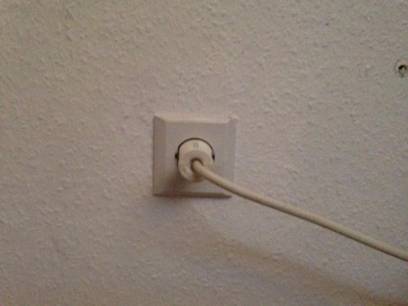 """""""Stromkabel aus der Wand"""" - (Tiere, Haustiere, Nager)"""
