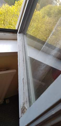 Womit kann ich dieses Fenster abdichten?