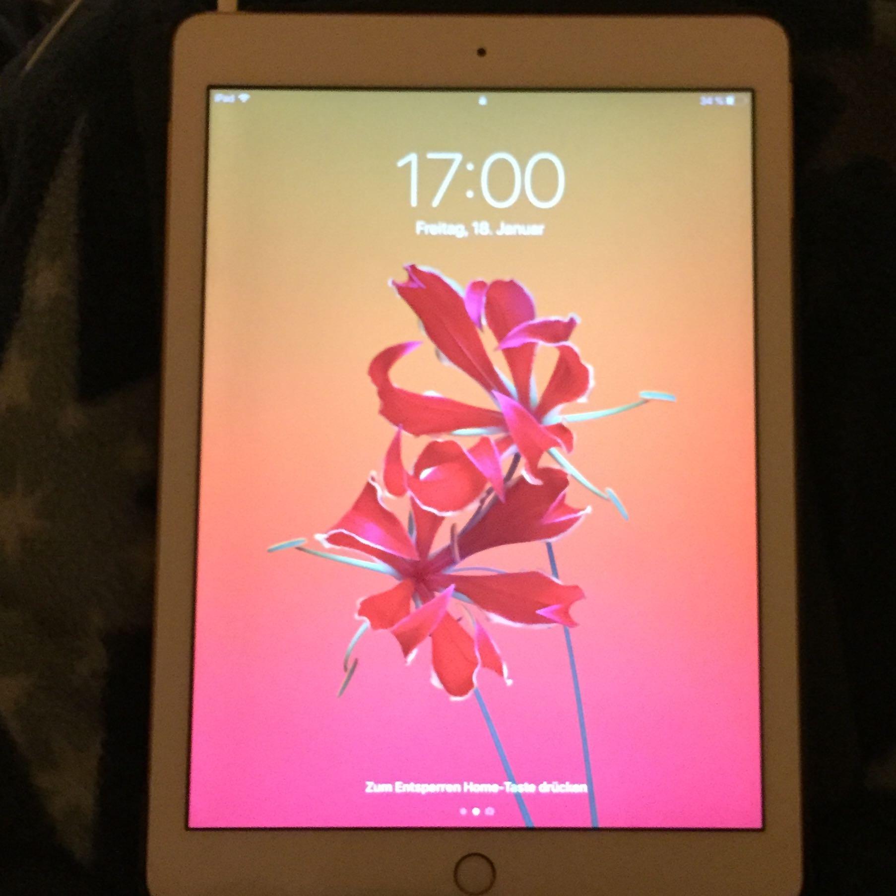 Woran erkenne ich ob mein iPad Fake ist? (Handy