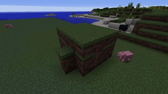 die region - (Minecraft, Gaming)