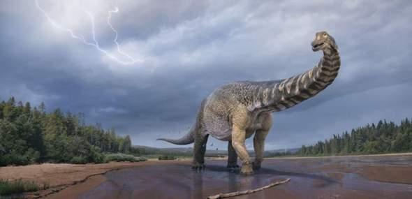 Würdest du gerne diesem Dinosaurier begegnen?