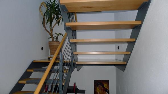yorkshire terrier wie offene treppen absichern welpen treppe yorki. Black Bedroom Furniture Sets. Home Design Ideas