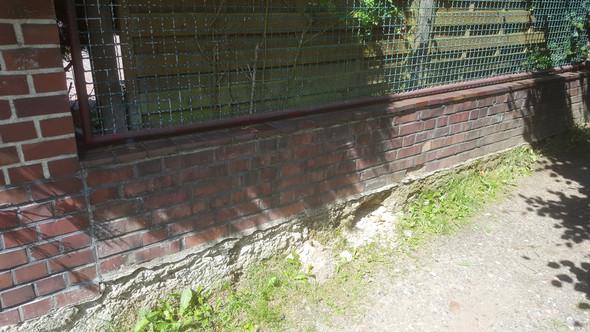 Zaun Reparatur Fundament Erneuern Technik Bau Hausbau