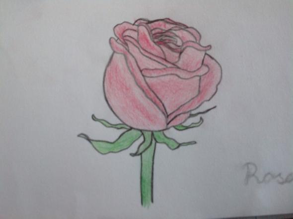Zeichne ich schöne Bilder? (zeichnen)