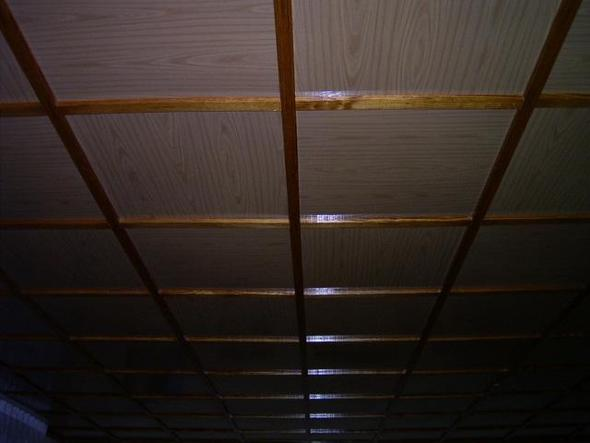 Zimmerdecke 001   (Haus, Zimmerdecken)