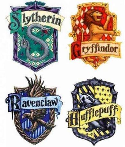 Zu Welchem Hogwarts Haus Gehort Ihr Buch Filme Und Serien Harry