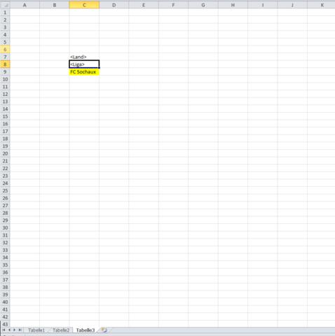 Tabelle 3 -  Ergebnisseite - (Excel, Funktion, Verein)