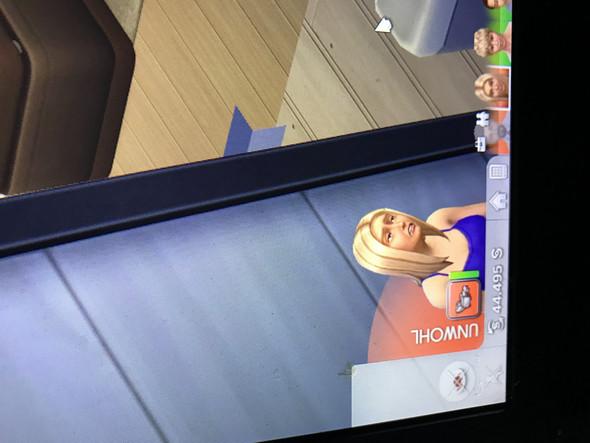 - (Games, Spiele und Gaming, Sims)